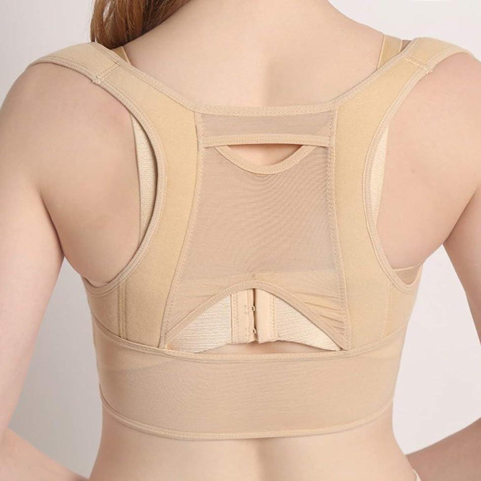 テロめんどりアナロジー通気性のある女性の背中の姿勢矯正コルセット整形外科の肩の背骨の姿勢矯正腰椎サポート(ベージュホワイト)
