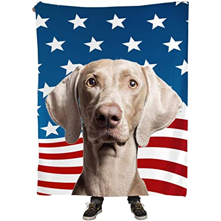 Natural Enjoy Funny Weimaraner Dog With Stars Flag Pattern Throw Blanket 50 X 60 For Dog Mom Gift Home Kitchen