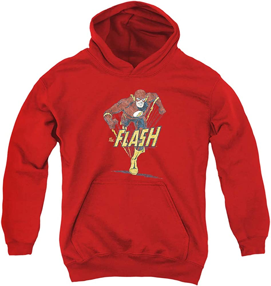 DC Flash Desaturated Unisex Hoodie Youth Pull-Over Max 56% Free shipping / New OFF