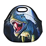 LBBDARE Lunch Bag Thermal Bags Outdoor Picnic Meal Package for Boys Girls Women Kids-Dino