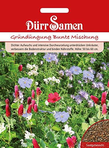 Dürr Samen 4338 Gründüngung Bunte Mischung 500g (Blumensamen)