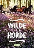 Wilde Horde  1: Die Pferde im Wald: Die Pferde im Wald (1) - Katrin Tempel