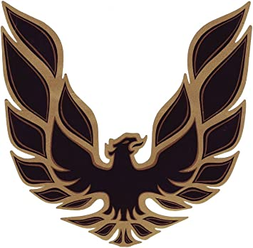 Amazon Com 1973 1974 1975 1976 1977 1978 Pontiac Firebird Trans Am Sail Panel Bird Decals Special Edition Gold Automotive