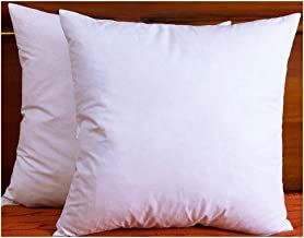 DOWNIGHT Two Pillow Inserts, 20 X 20 Inch, Down and Feather Throw Pillow Insert, The Fabric is Cotton, Decorative Throw Pillows Insert. These Products are Only Sold and Fulfilled by Amazon.