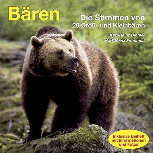 Bären Titelbild