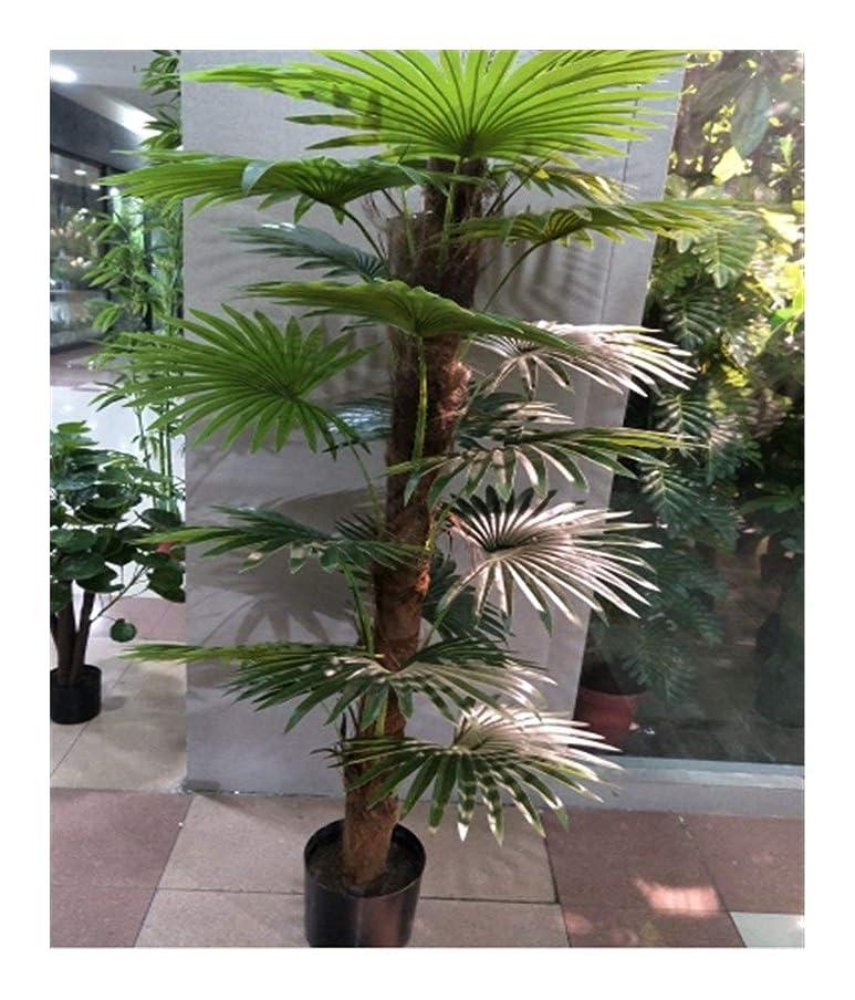句読点シャッタースケートJtydj シミュレーションツリーフェイクグリーン工場1.6 Mパームツリー20リーフホームホテルオフィス観葉植物 (色 : AS PICTURE, サイズ : 1.6m)
