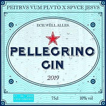 Pellegrino & Gin