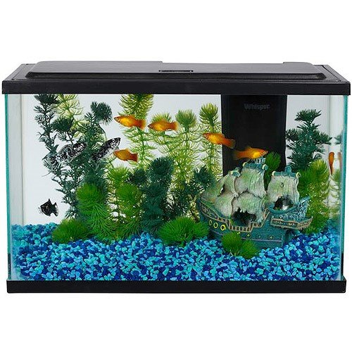 Aqua Culture 5 Gallon Aquarium Starter Kit with LED
