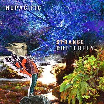 Strange Butterfly