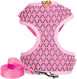Luck Dawn Dog Harness with Leash Set, Adjustable Breathable Mesh Padded Puppy Vest Harness with Crystal Decoration