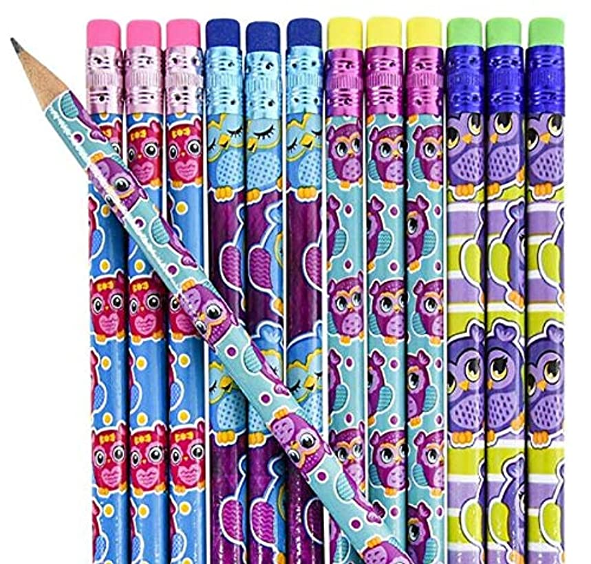 Owl Pencils Varied Colors and Prints School/Office/Party Favors 12 Pack