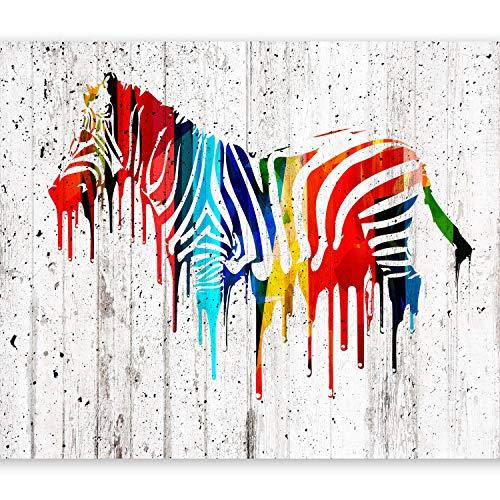 murando Papier peint intissé 350x256 cm Décoration Murale XXL Poster Tableaux Muraux Tapisserie Photo Trompe l'oeil–Bois zèbre coloré Afrique animale f-B-0035-a-a