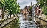 NA Puzzle Jigsaw Rompecabezas 500 Piezas Belgium Houses Bruges Canal Trees HDR Arte Bricolaje para Adultos Mayores Adultos