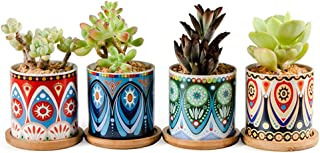 """winemana Succulent Plant Pots, 3"""" Planter for Cactus with Drainage Hole and Bamboo Trays, Bohemian Style Office Decoration..."""