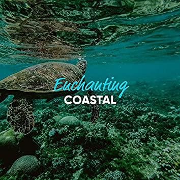 Enchanting Coastal Tones