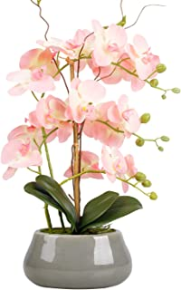 LIVILAN Artificial Pink Flowers Silk Orchids Faux Orchid Plant in Pot Phalaenopsis Plants Large with Ceramic Vase for Home...