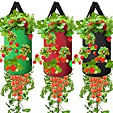 3 Pack Upside Down Planter Tomato Herb Strawberry Grow Bags Garden Growing Bags Durable Aeration Fabric Planter Bags with 13 Grow Pouches Plant Growing Hanger Bag for Garden Plants