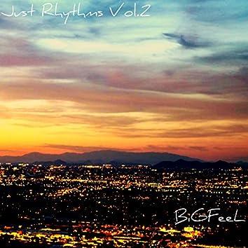 Just Rhythms, Vol. 2 (feat. BiGFeel)