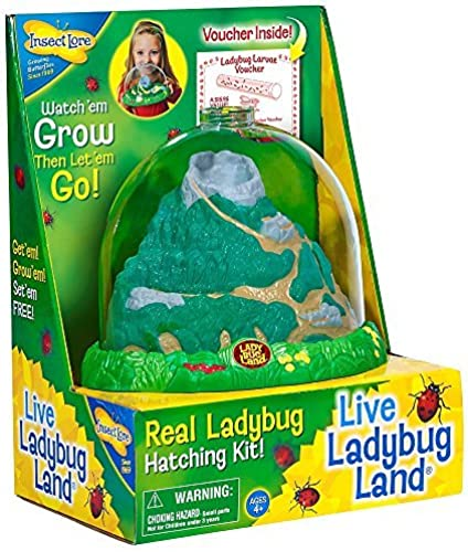 Original Ladybug Land with Voucher by Insect Lore
