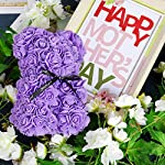 youbet rose bear-rose flower bear gifts for mother's day–10inch rose teddy bear girlfriend gifts,gifts for women-clear gift box and gift card included-perfect for anniversary's,bridal showers,weddings
