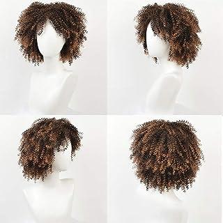 Yrattary 変態巻き毛のかつらアフリカの黒人女性の爆発ヘッド14インチ小さな巻き毛の化学繊維かつらパーティーかつら (Color : C-2)