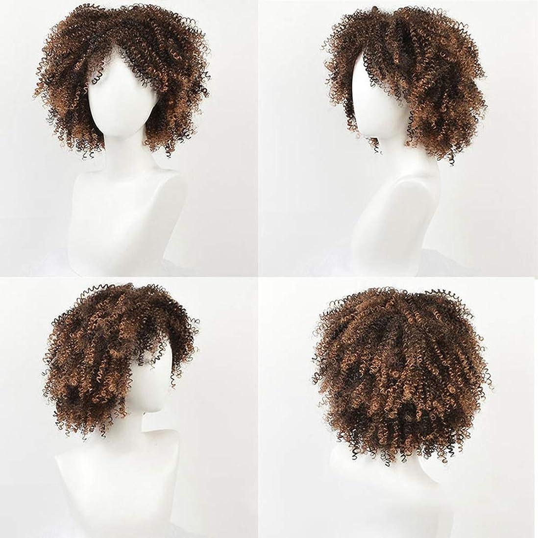 ブランク実り多い所得BOBIDYEE 変態巻き毛のかつらアフリカの黒人女性の爆発ヘッド14インチ小さな巻き毛の化学繊維かつらパーティーかつら (色 : C-2)