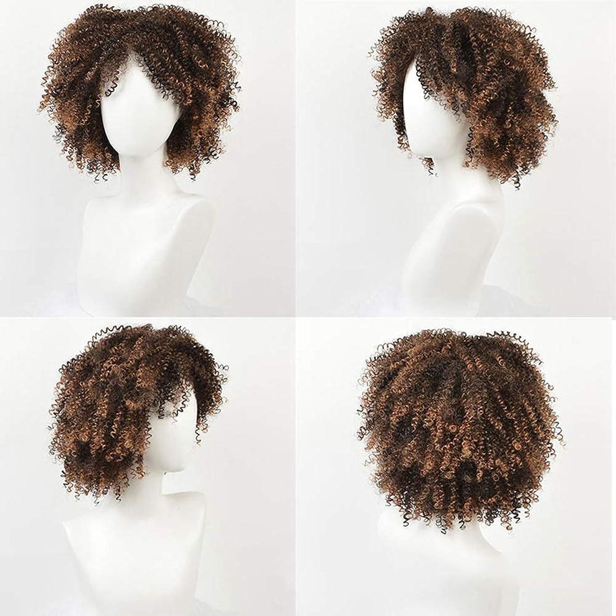 アルカトラズ島月曜ブラインドBOBIDYEE 変態巻き毛のかつらアフリカの黒人女性の爆発ヘッド14インチ小さな巻き毛の化学繊維かつらパーティーかつら (色 : C-2)