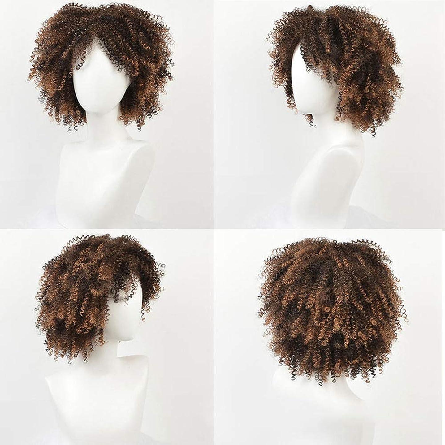 コーナー頭流行BOBIDYEE 変態巻き毛のかつらアフリカの黒人女性の爆発ヘッド14インチ小さな巻き毛の化学繊維かつらパーティーかつら (色 : C-2)