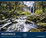 REGENWALD 2020: DER GRÜNE PLANET - Tiere - Wald - Amazonas - Kalender Posterkalender - Wandkalender