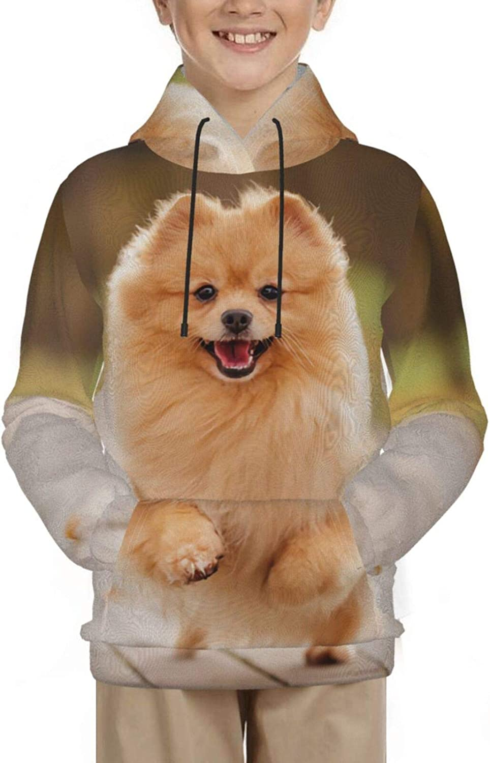 Unisex Genuine Free Shipping Teen Hooded Sweater 3D Hoodie Swea Pullover Novelty Print Popular product