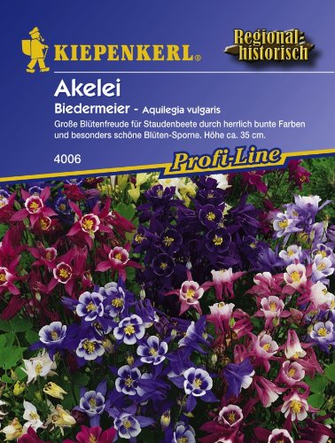 Akelei, 'Biedermeier'