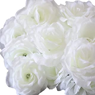 Best silver jaswand flower Reviews
