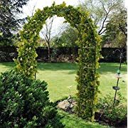 New Self Assembly Garden Arch For Climbing Plants & Roses - Free Postage