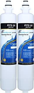 EXCELPURE RPWF Refrigerator Water Filter Compatible With GE RPWF (Not RPWFE), RWF1063, RWF3600A, WSG-4 (2)