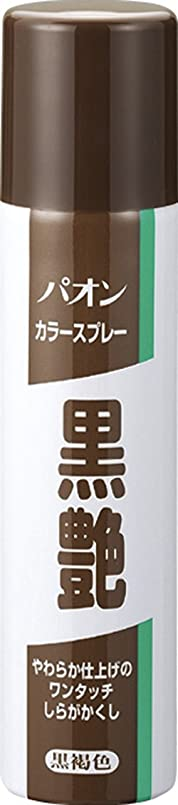 貞ペグかけるパオン カラースプレー黒艶 黒褐色 85g