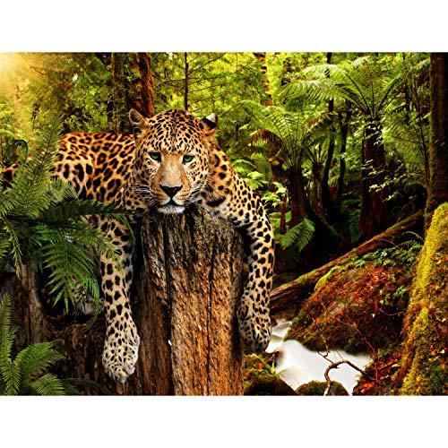 Fototapete Leopard Afrika 352 x 250 cm Vlies Tapeten Wandtapete XXL Moderne Wanddeko Wohnzimmer Schlafzimmer Büro Flur Grün Braun 9201011a