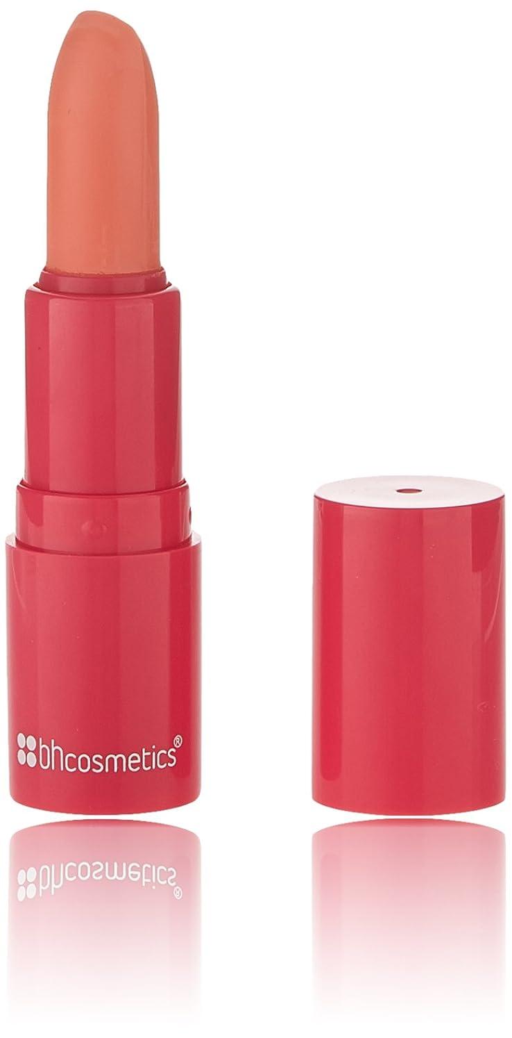 くしゃみ集中的なあそこBHCosmetics BH化粧品アートリップスティック、 ポップ