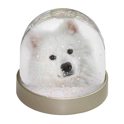 Advanta Group Samoyed Dog Snow Dome Globe Waterball Gift, Multi-Colour, 9.2 x