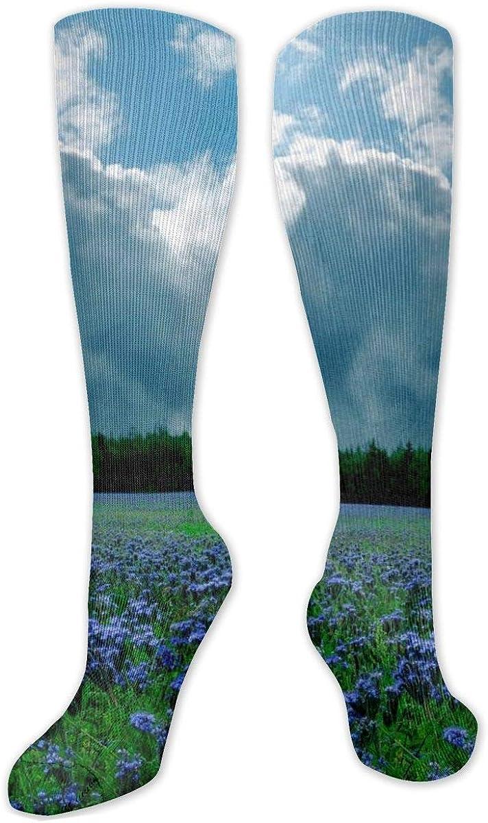 Lavender Butterfly Purple Knee High Socks Leg Warmer Dresses Long Boot Stockings For Womens Cosplay Daily Wear