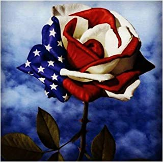 Chenway 5d Diamond Painting Cross Stitch 30x40cm Painting Kit for Adult Beginners by-Number Embroidery Tools Craft Art Canvas Oil Painting L Point Drill for American Independence Day (C)