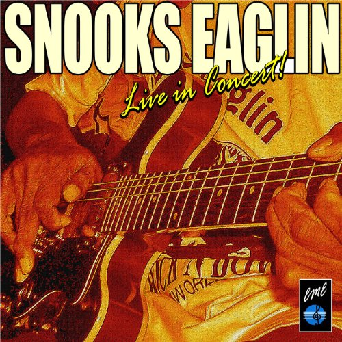 The Snooks Eaglin Live in Concert