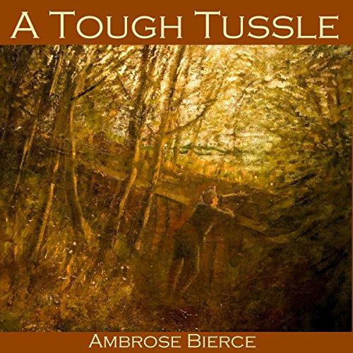 A Tough Tussle cover art
