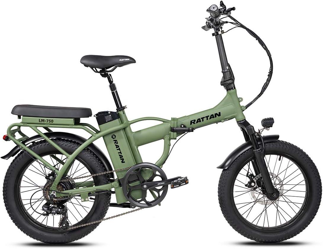 Max 80% OFF Rattan 48V 500W 750W Electric Bike for Adults inch 20 Dallas Mall Bi Folding