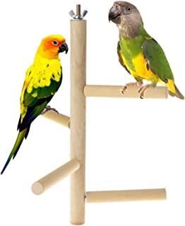 Parakeet Perch,Bird Natural Wood Stand,Parrot Cage Top Wooden Branches for Standing,Toys for Small Medium Parrots Conure B...