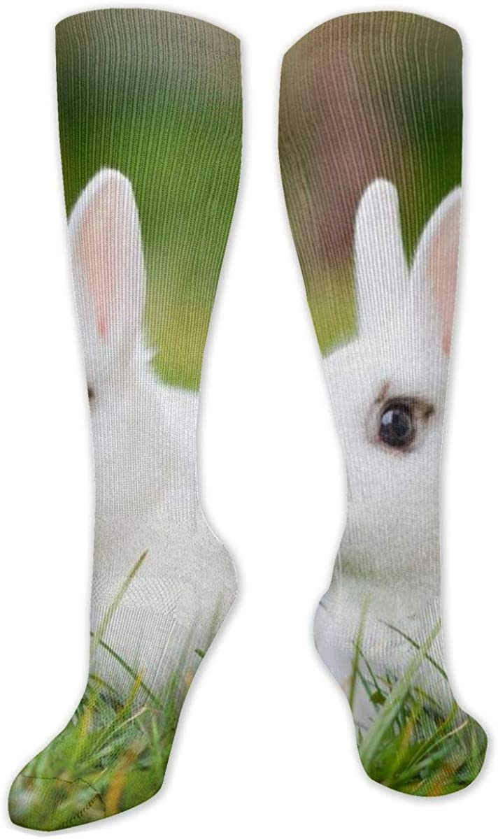 Cute Rabbit On Grass Knee High Socks Leg Warmer Dresses Long Boot Stockings For Womens Cosplay Daily Wear