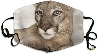 Unisex Cougar Lion Washable Anti-Pollution Breathable Health Masks Mouth Face Mask