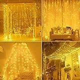 Cortina de luces,Cadena de Luces 3m x 3m 300LED luces de Navidad al Aire Libre Blanco Cál...