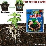 Asin 3 Pcs Rapide Plante Fleur Enracinement Poudre, Bonsaï Plante Croissance Rapide Racine Hormones régulateurs de Plus en Plus de semis Croissance Rapide Transplantation Engrais