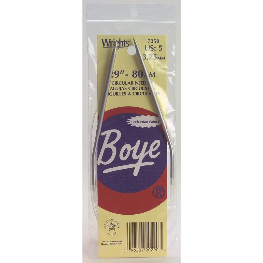 Boye 29-Inch Aluminum Circular Knitting Needles, Size 4 jhx8420469