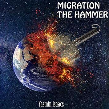 Migration the Hammer